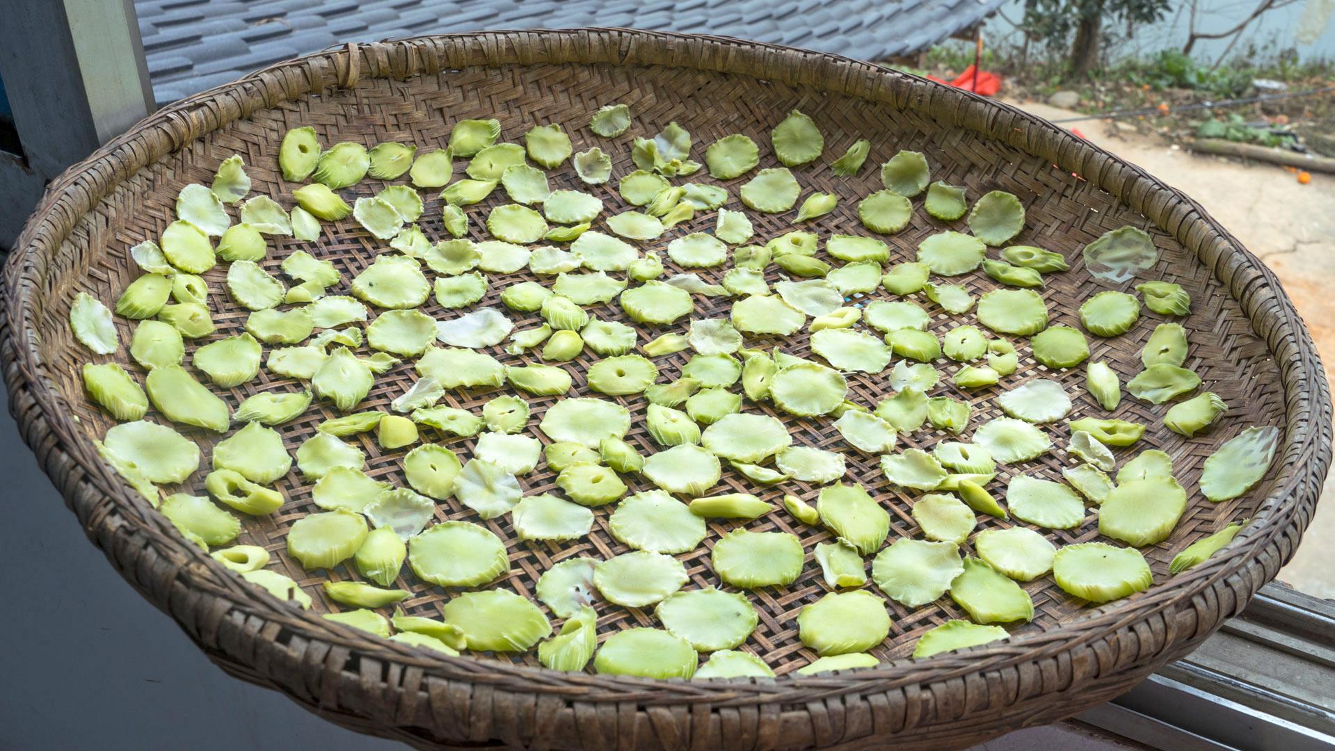 保存莴笋的最正确做法,一次做10斤,保存一年不坏,随吃随取