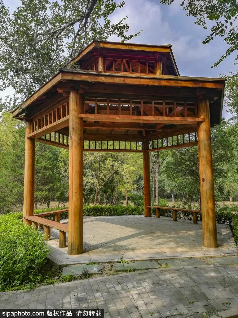 """免門票!森林公園裡藏著個""""小內蒙古"""",還免費停車~"""