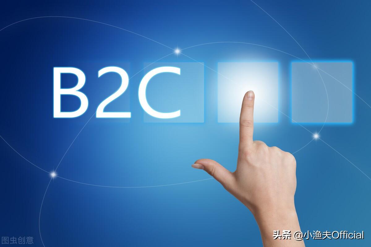 关于B2C业务五种商业模式、9个营销步骤
