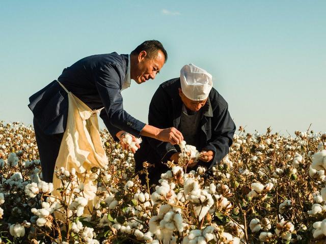 不可放弃的新疆棉花!H&M耐克自讨苦吃:市值累计蒸发954亿
