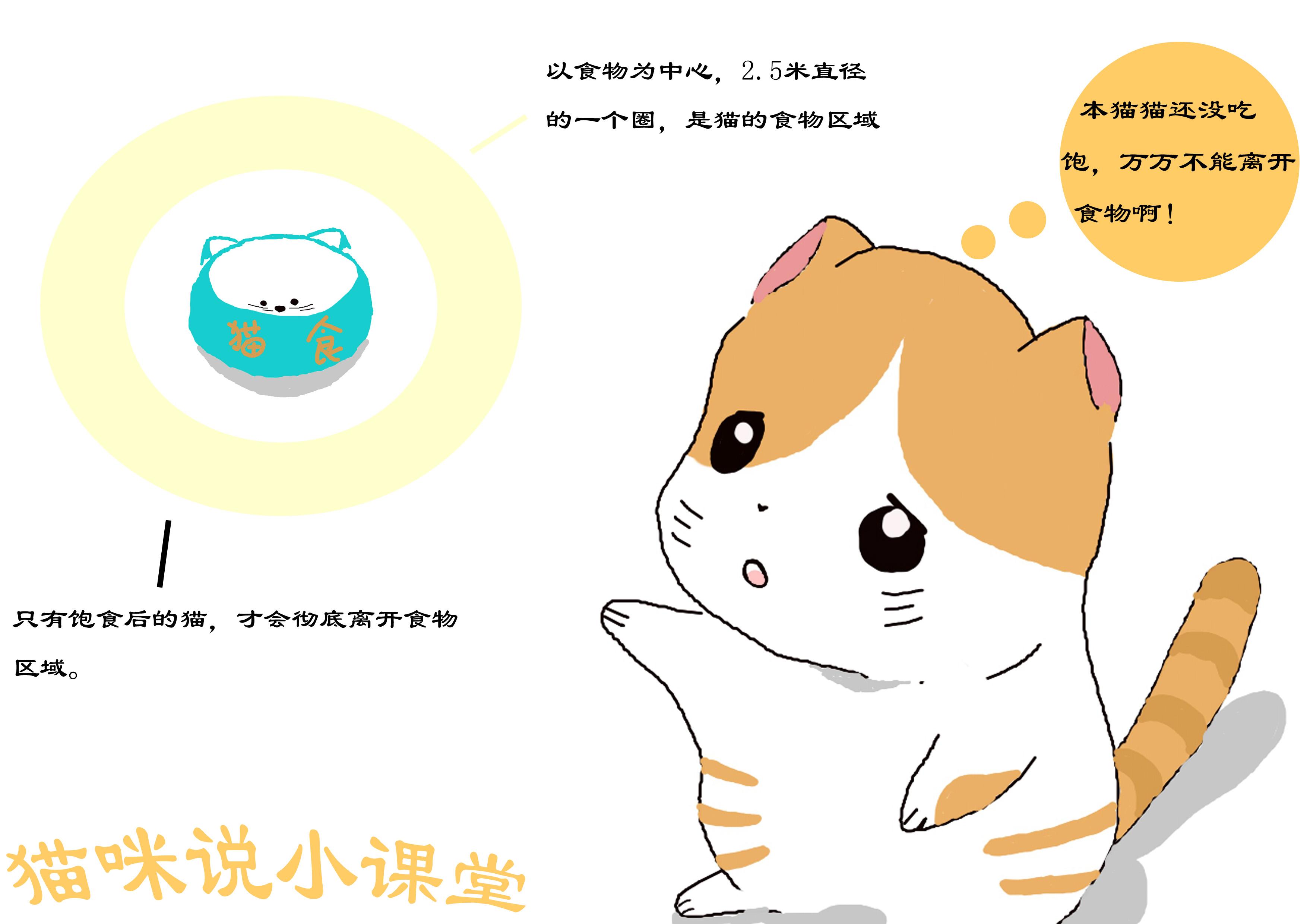 如何判断猫已吃饱,猫吃饱后的3种表现,猫有时会装出饥饿状态