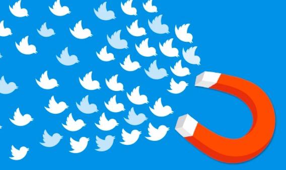 经营了3个月Twitter依然没有粉丝?教你如何吸引百万粉丝