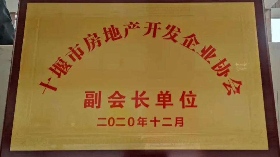 大势共趋|斌鑫第三子耀郧阳,启幕滨江人居新篇章