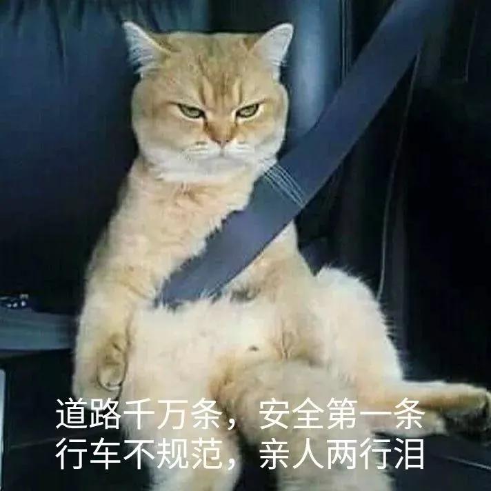 """女儿下车上演""""开门杀"""",司机老爸的保险能赔付吗?"""
