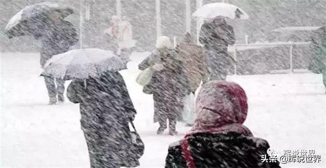 多伦多大学向零下48度寒流低头