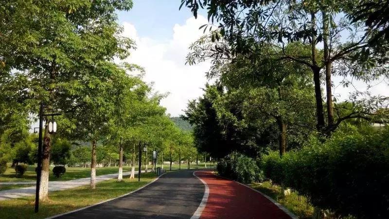 园林景观设计的小秘诀|园林景观设计的6大风格和30种弄法