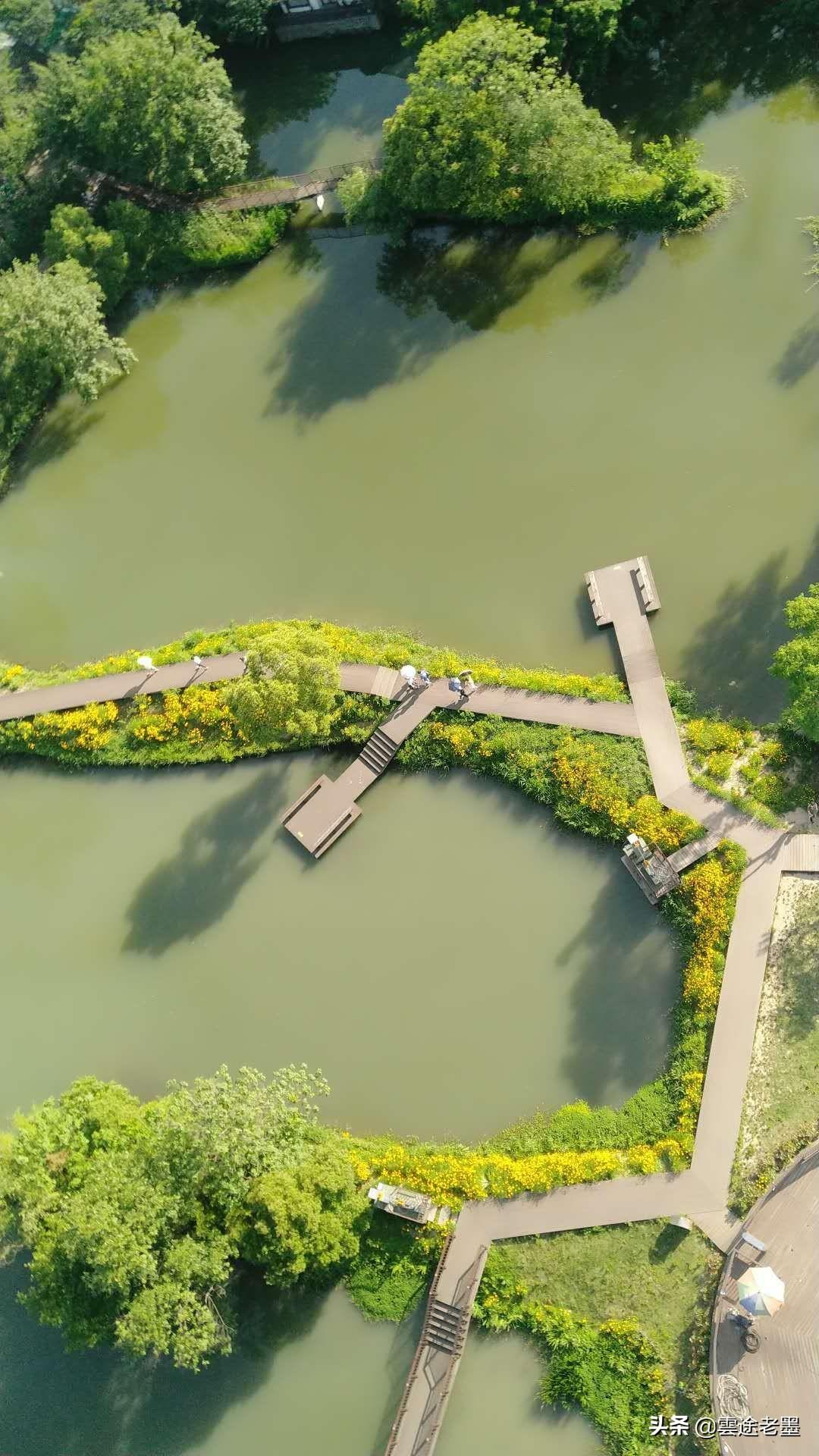 杭州西溪湿地简单玩法