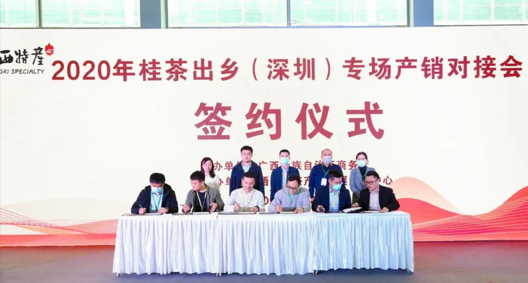 """桂茶抱团赴华茶盛宴 2020年""""桂茶出乡""""专场产销对接会在深圳举办"""