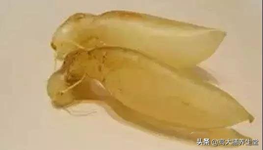 六大鱼胶的种类 分析其养生保健功效
