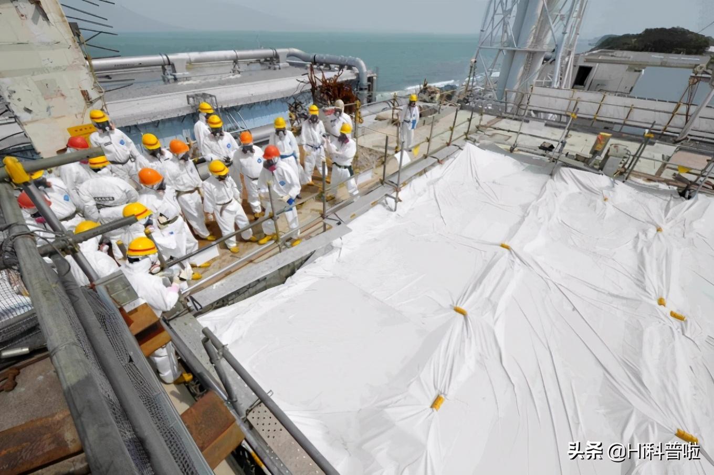 """日本福岛出现""""九足章鱼"""",与核污染有关吗?核辐射有多可怕?"""