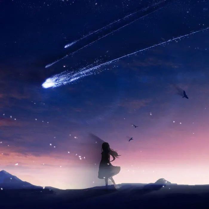 鲍毓明案反转:升起一个李星星,跌落一个韩某某