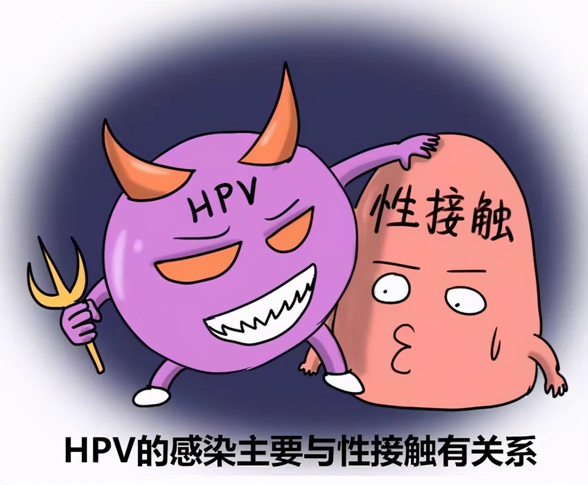 都安全小黄盒 | 感染了HPV,是X病吗?专家告诉你真相