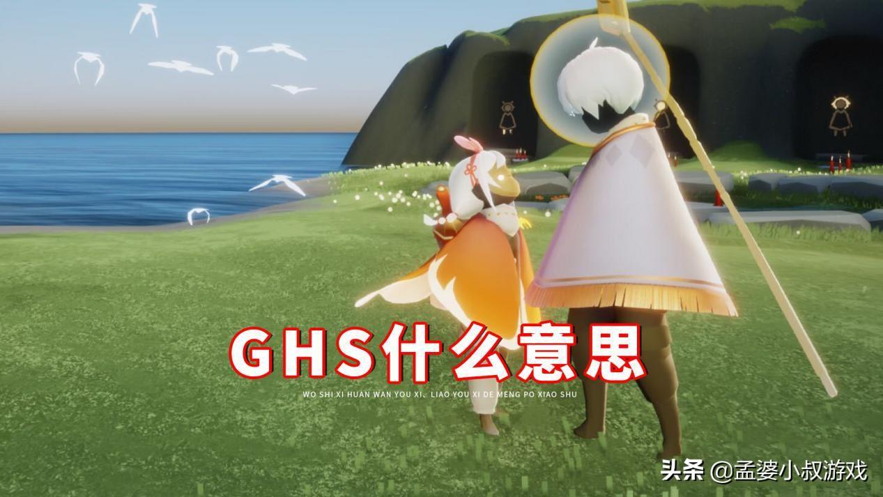 ghs什么意思(一个男生说要跟你ghs)