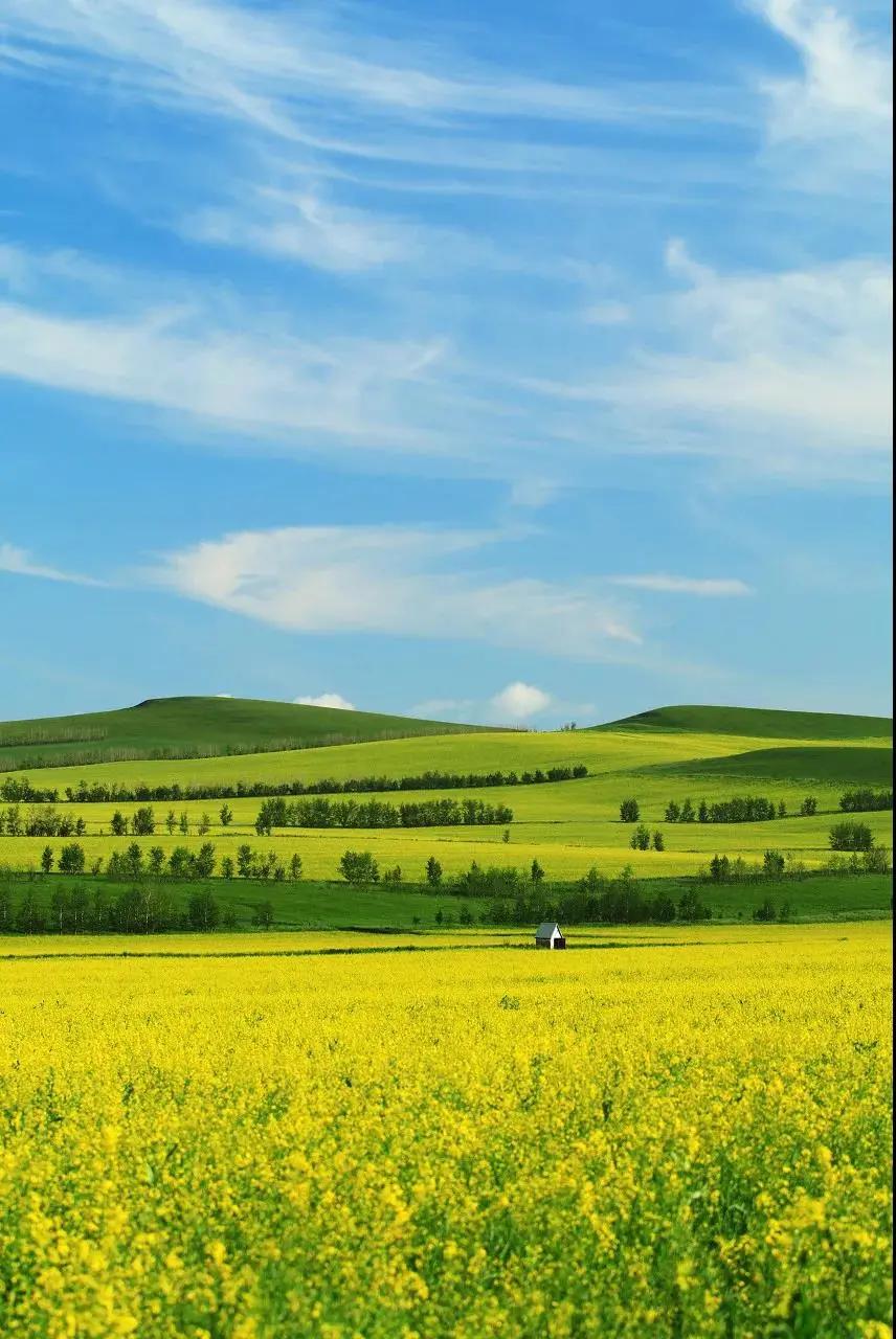 六月,我劝你一定要去一趟内蒙古