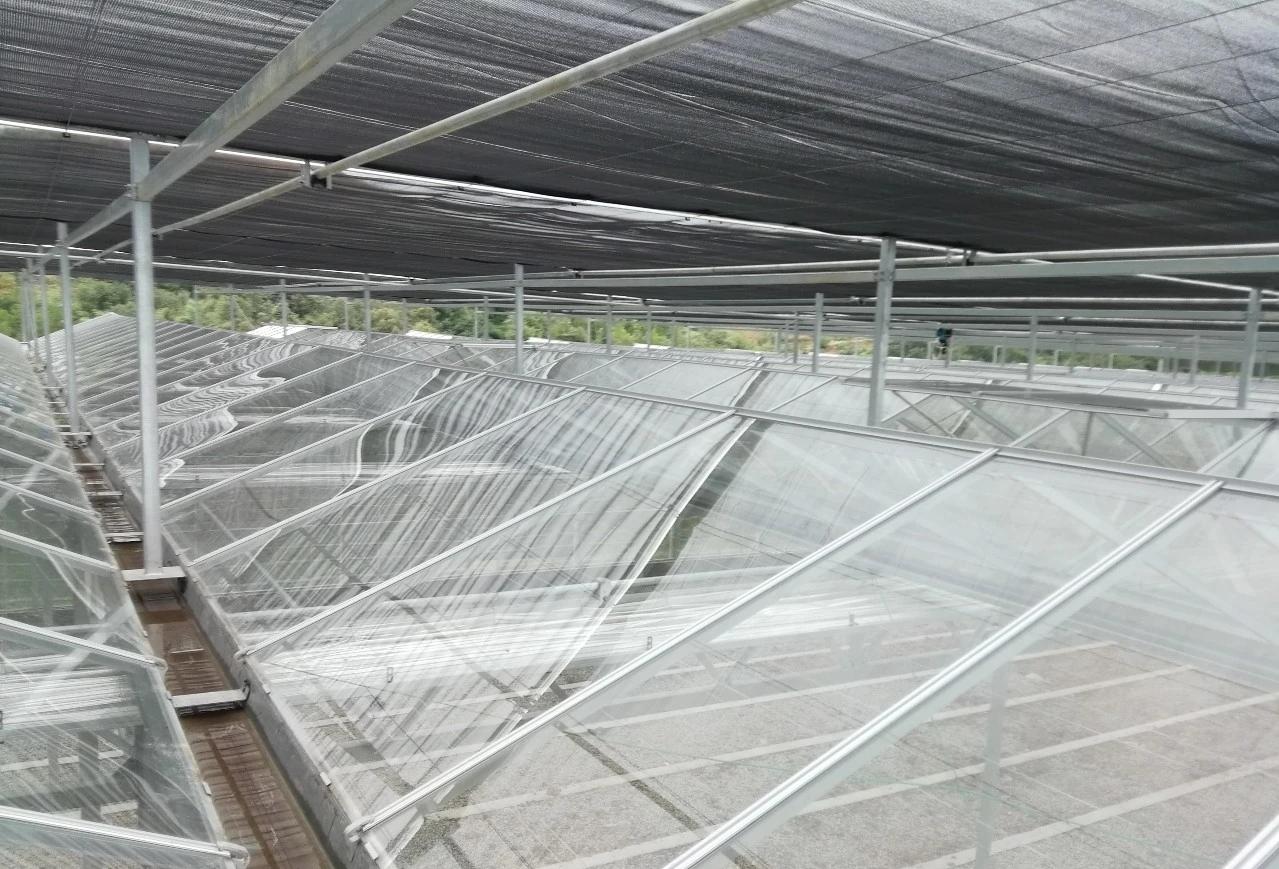 智能连栋温室大棚建造过程中常见的问题汇总