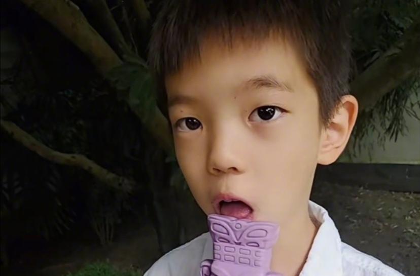 霍思燕晒儿子怼脸视频,嗯哼瘦到脱相双眼皮都消失,差点没认出来