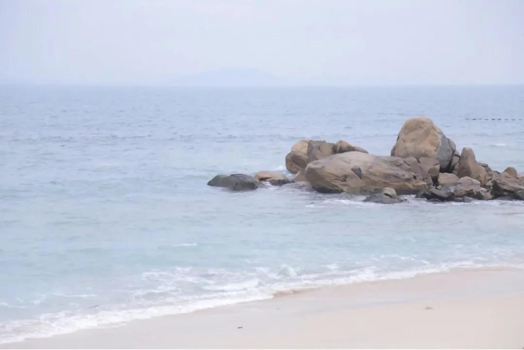 东学团建(成都校篇)  海へ、行こう