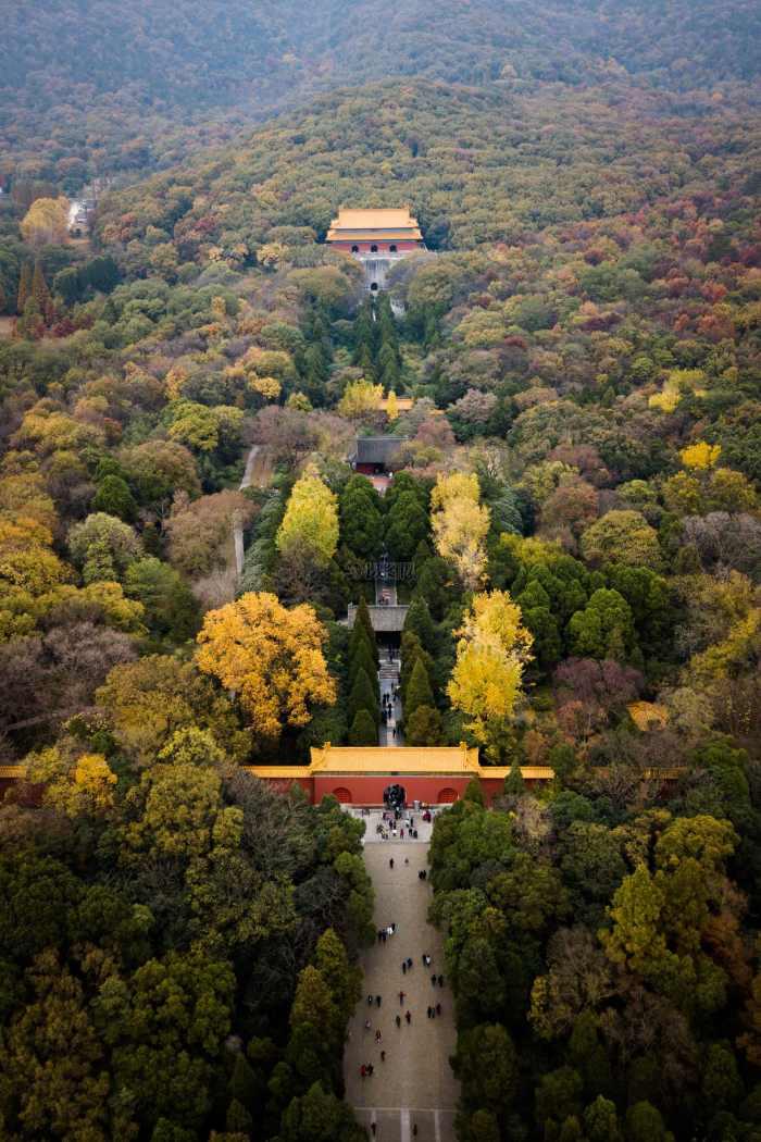 曾祥裕风水团队考察南京紫金山明孝陵  揭开皇陵神秘面纱