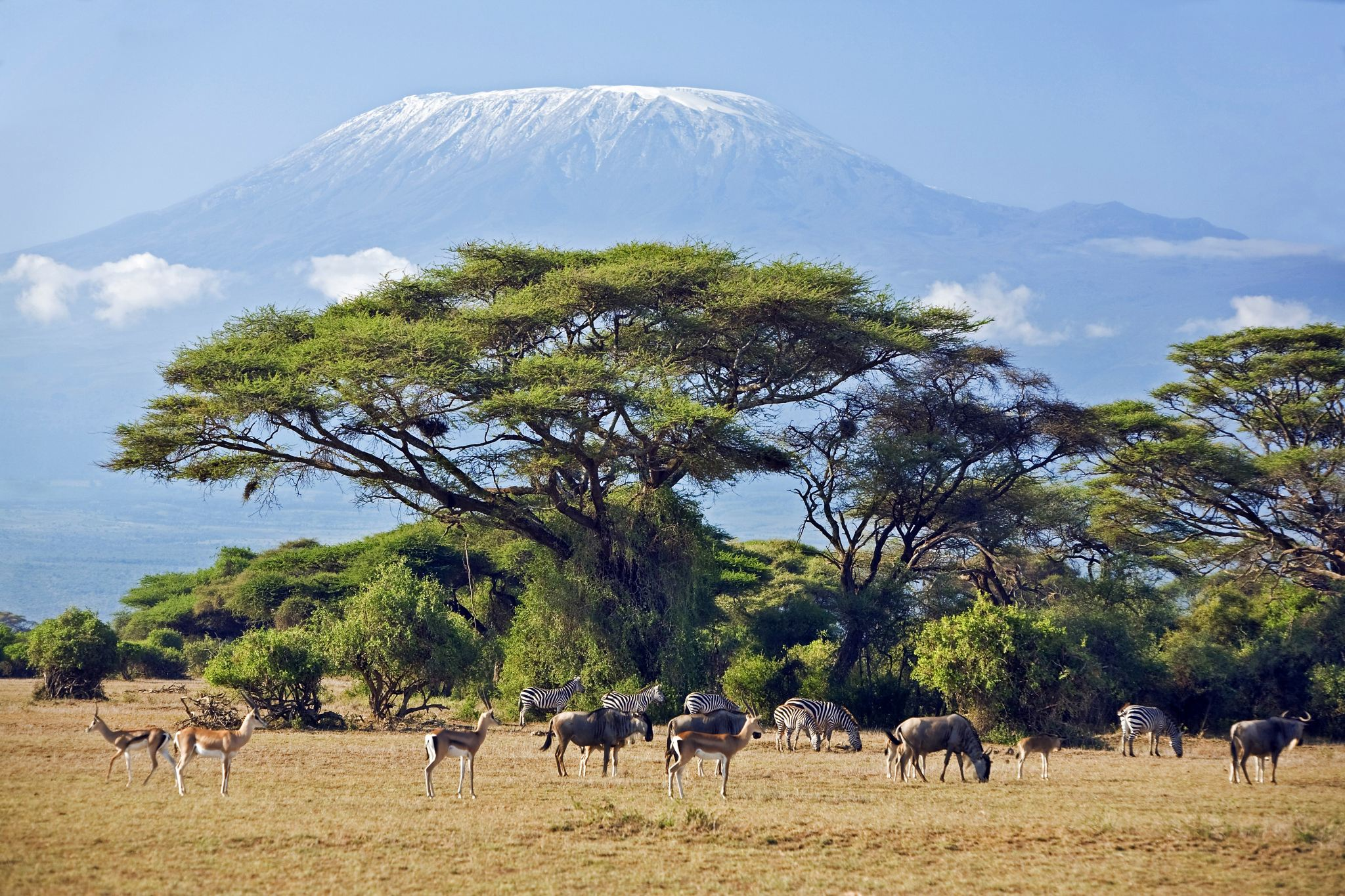 非洲的伊甸园,位于世界第二大火山口,与月球火山口极为相似-第1张图片-IT新视野