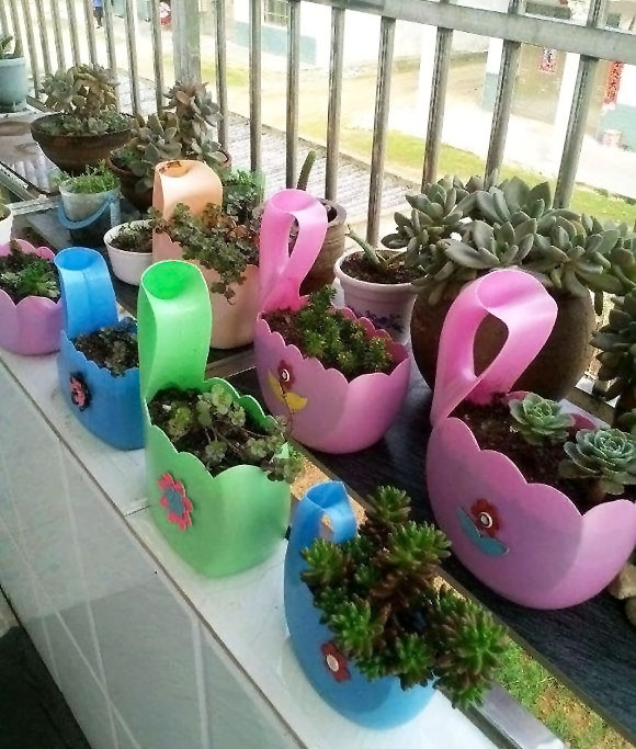 空洗衣液瓶子不要扔,只需几步就能变成漂亮的花盆 家务妙招 第1张