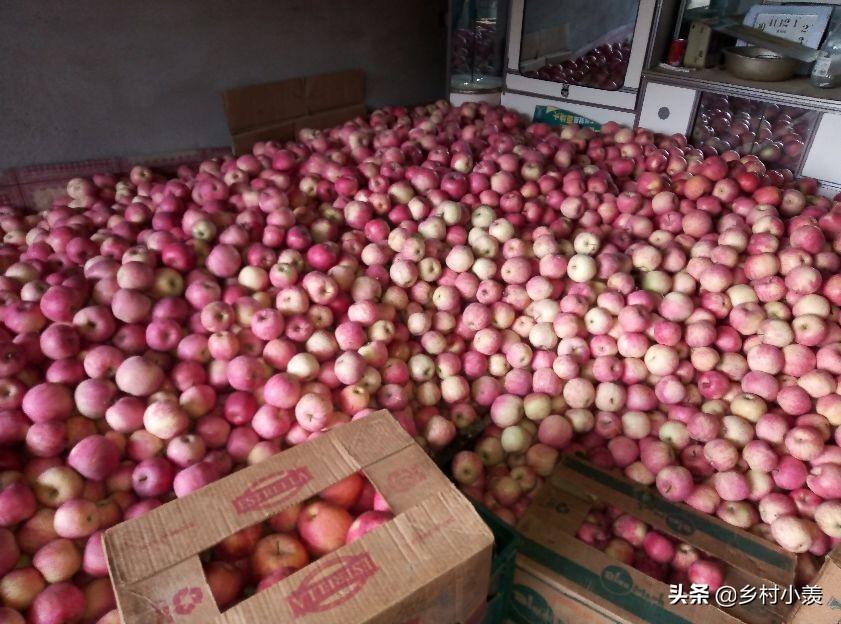 农村的农产品为什么卖不上一个好价钱,这些原因你认同吗?