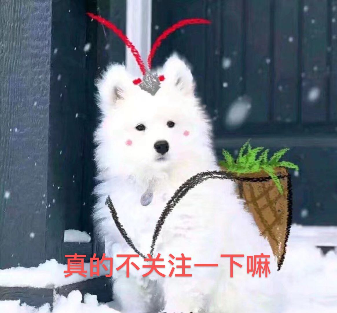 offer结局:王骁出国,何旻哲淘汰,丁辉逆袭成功重回君合?