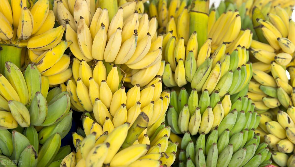香蕉沒放2天就變黑,教你正確的存貯方法,半個月也不壞