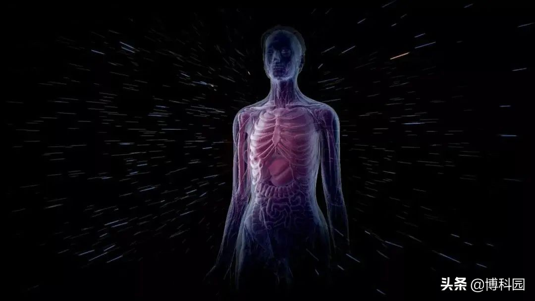 在太空微重力下,宇航员的大脑、眼睛和骨骼,发生了伤害性变化
