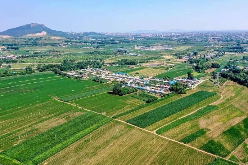 辽宁通报15起乱占耕地建房典型案例