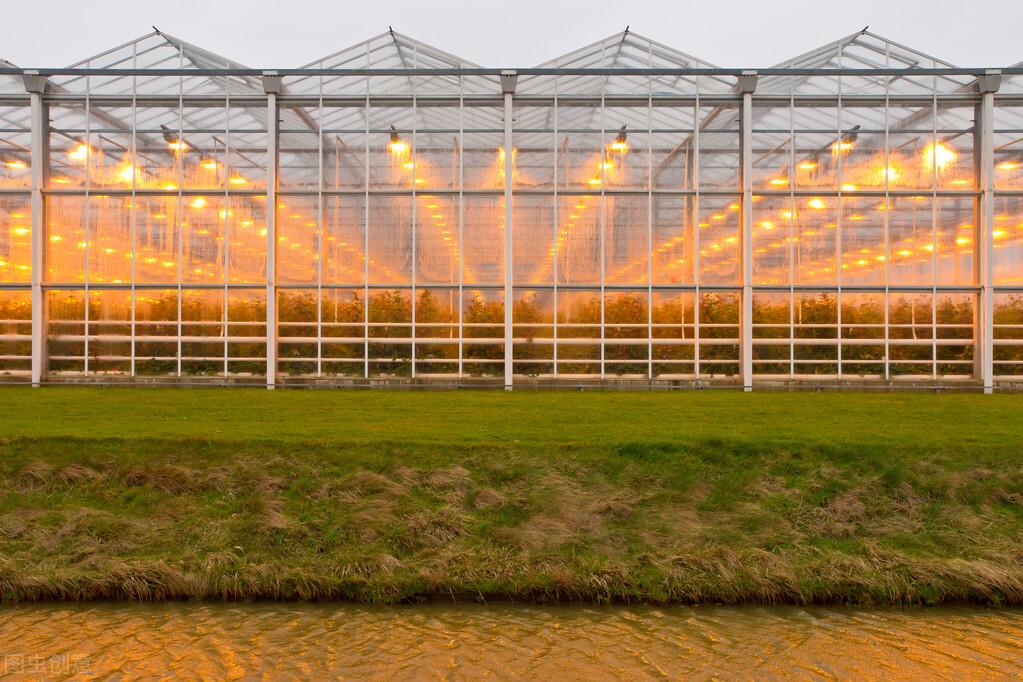 荷兰模式玻璃温室大棚主体结构造价有多高、荷兰温室造价